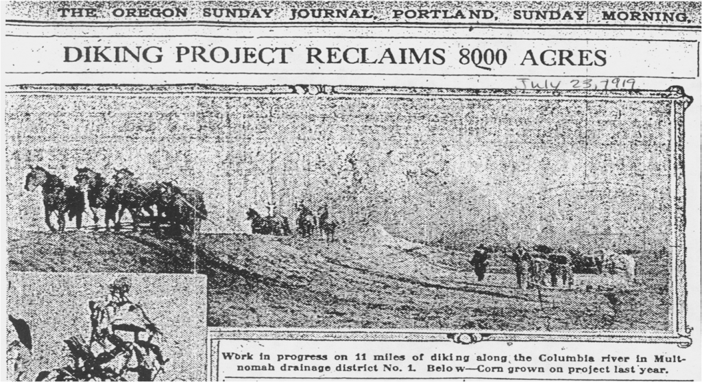 """Diking Project Reclaims 700 Acres"" newspaper article from 1917 when drainage districts are first established"
