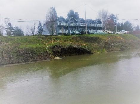 photo of erosion on levee in Bridgeton neighborhood