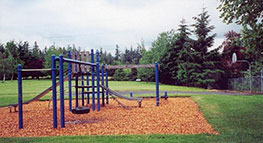 Photo of playground at Pelfrey Park in Fairview