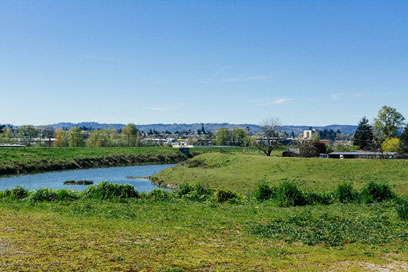 photo of a levee and the columbia slough