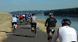 Photo of people biking along levee path along Marine Drive