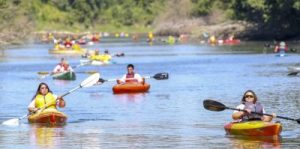 large group of people kayaking on the Columbia Slough during the Columbia Slough Watershed Council's Regatta event
